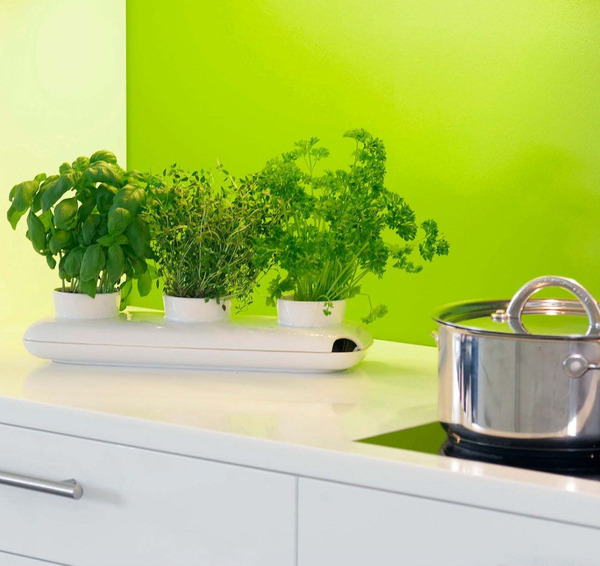 Garden Design Garden Design with Outstanding Kitchen Window Herb