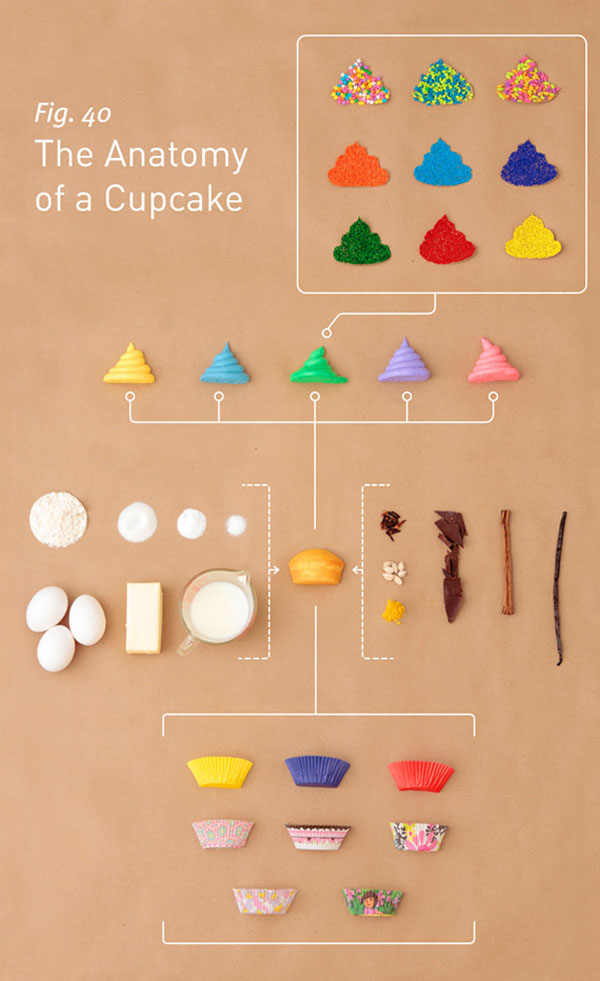 The Anatomy of a Cupcake