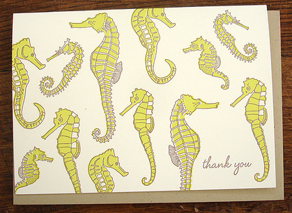 Seahorses by Hello! Lucky