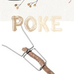 Poke: Twig Roaster and Fire Fork