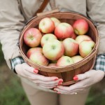 Going to the Apple Orchard, photos by John Allen