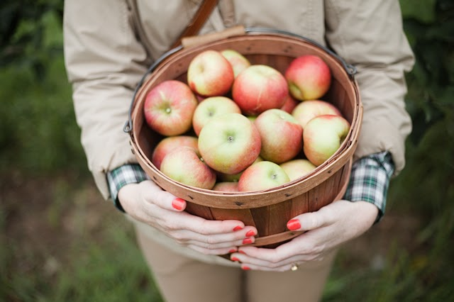Going to the Apple Orchard, photo by John Allen