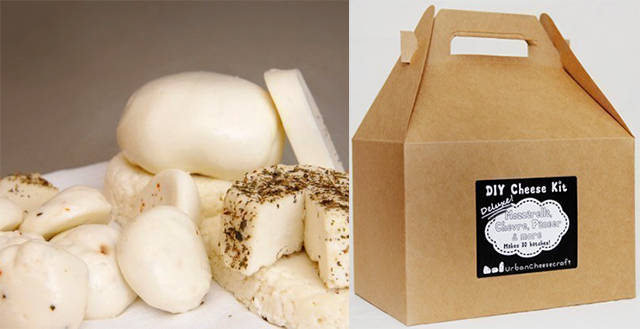 DIY Cheese Kit by Urban Cheesecraft