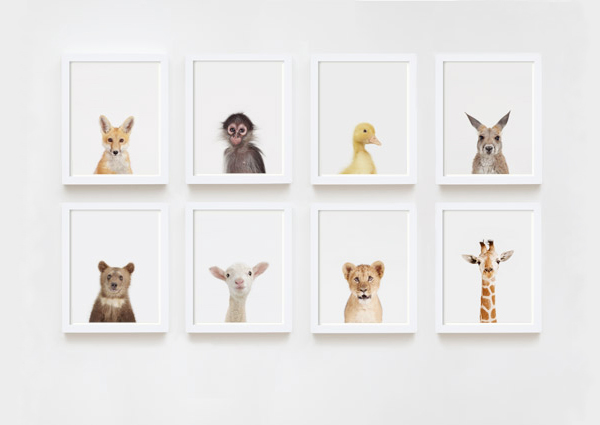 Little Darlings Animal Prints by Sharon Montrose