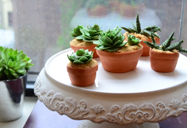 Succulent Cupcakes by Pixel Whisk