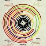 Seasonal Fruit Calendar by Chasing Delicious