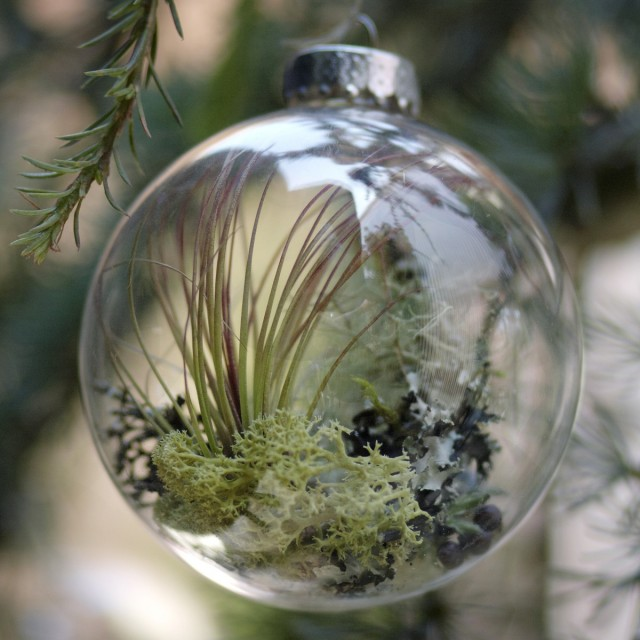 Forest Floor Ornament by Flora Grubb