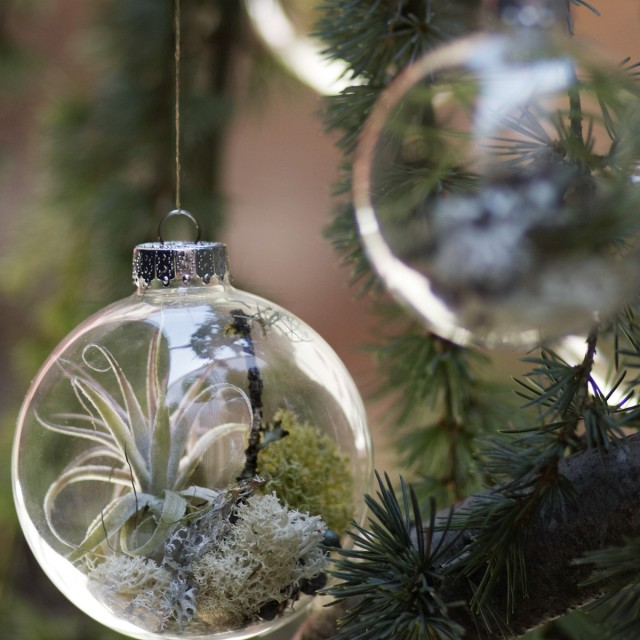 Forest Floor Christmas Ornament by Flora Grubb